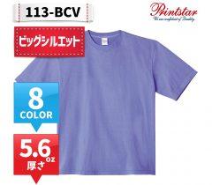 113-BCV